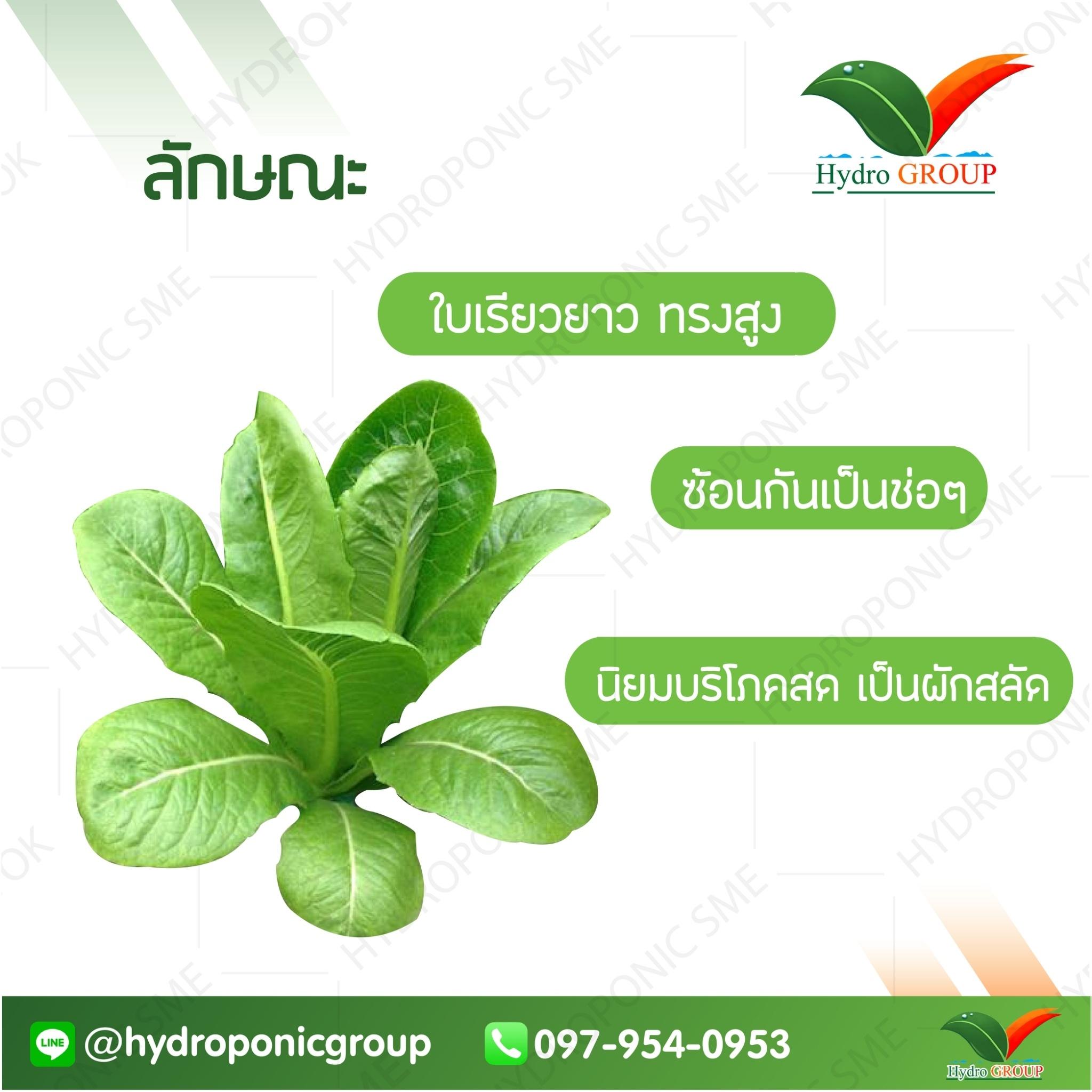 green cos