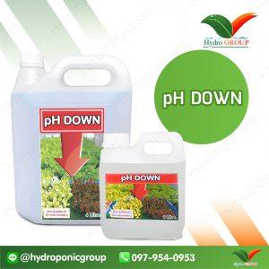 พีเอชดาวน์ (pH Down)