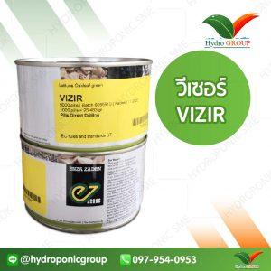 กรีนโอ๊ค วีเซอร์ (Green Oak Vizir)